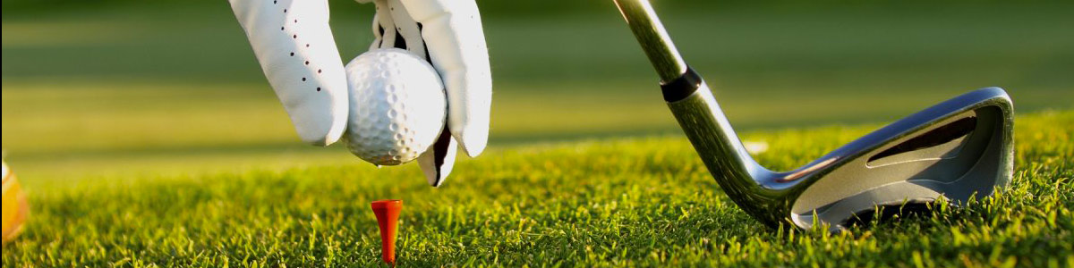 Residence San rocco nelle vicinanze puoi trovare il campo da golf Gardagolf